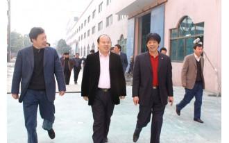 江苏省环保厅领导来海达视察